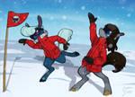 Antarctic Idiots