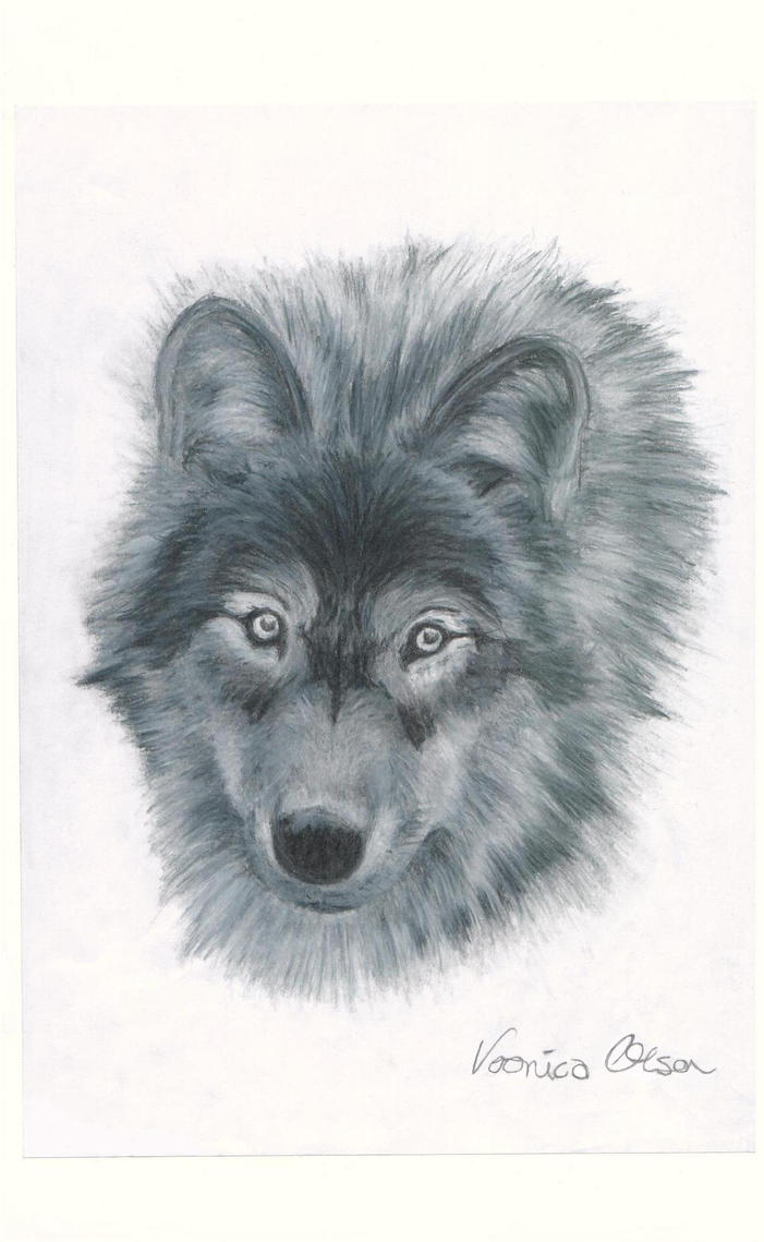 Wolf by Venilia