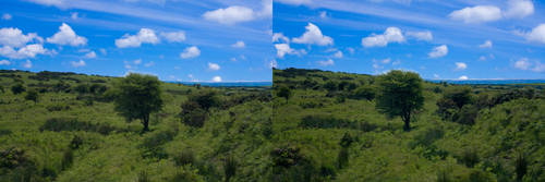 Bodmin moor stereo pair by Jageaux
