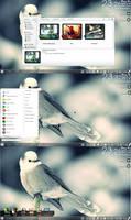 my desktop with xwidget 16/5/2012