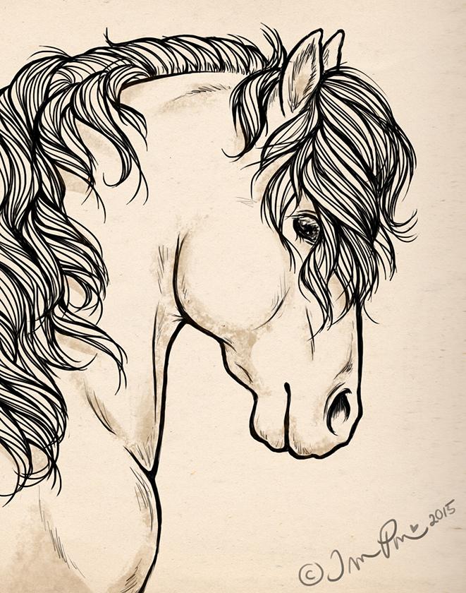 Curly by Avelynnn