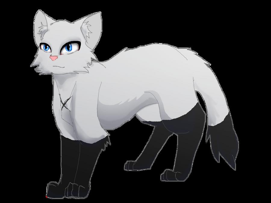 Any Good Black Cat Names Please