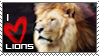 Love Lions Stamp 2 by HavickArt