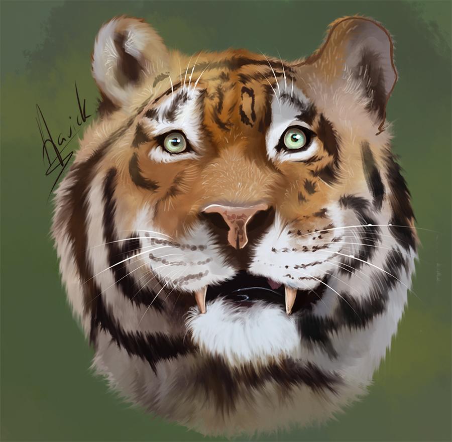 Tiger by HavickArt