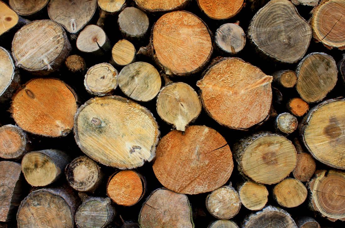 Firewood by LaddeDadde