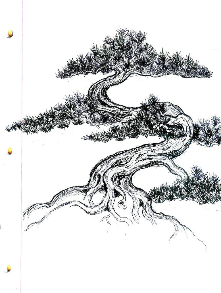 Bonsai Tree Clip Art Black And White Sketch Coloring Page Vacuum Coloring Pages