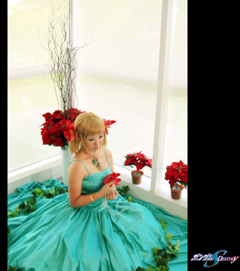 Poinsettia Princess by hiyuki