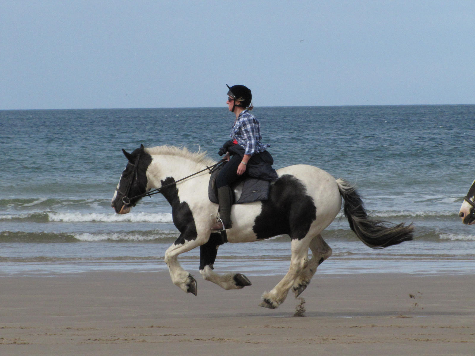 horse rider on the beach by cloudyhead on deviantart