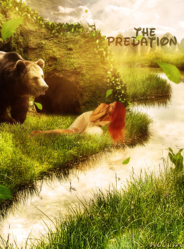 Hungry Bear by yngan2001