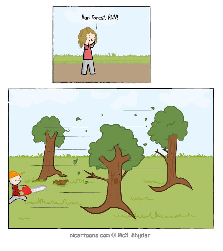 Run Random Forest