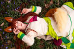 Spice and Wolf I by blinkfreak182