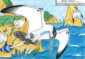 ,,Seabirds,,