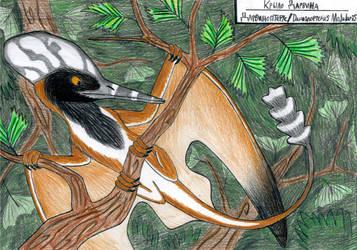 Wing of Darwin