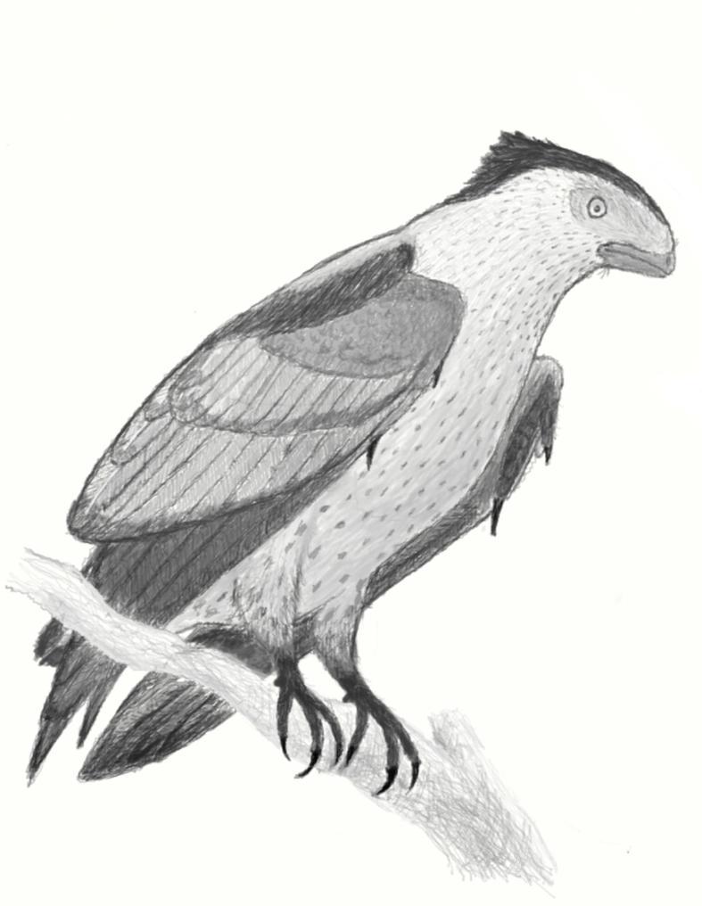Avisaurus archibaldi by casielles