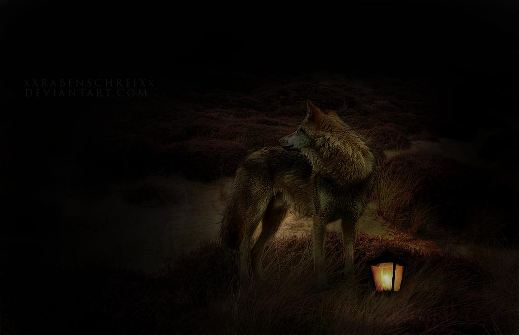 Alone in the Dark by xXRabenschreiXx
