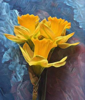 Daffodils  by james-e-thomas