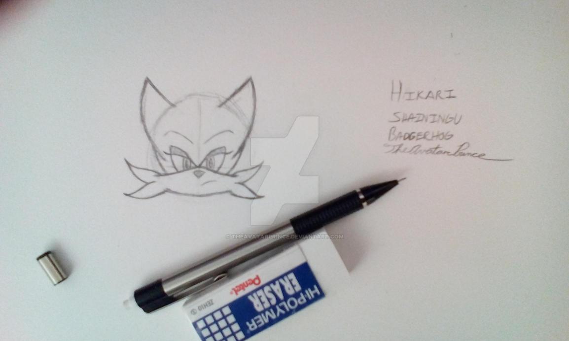 Hikari Shainingu Badgerhog (unfinished) by TheAvatarPrince