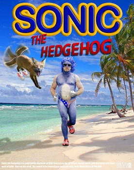 sonic the hedghog movie