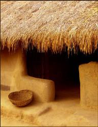tribal living by sharon-amrolia
