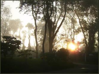 rising mist by sharon-amrolia