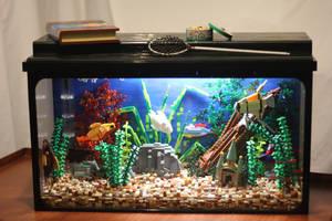 Tropical Aquarium ~ Front View