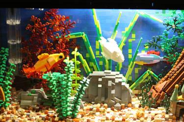 Tropical Aquarium ~ Close-up by JanetVanD