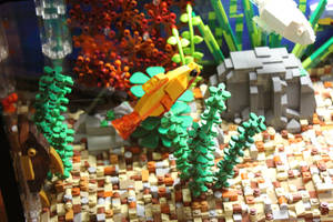 Tropical Aquarium ~ Plecostomus and Friends