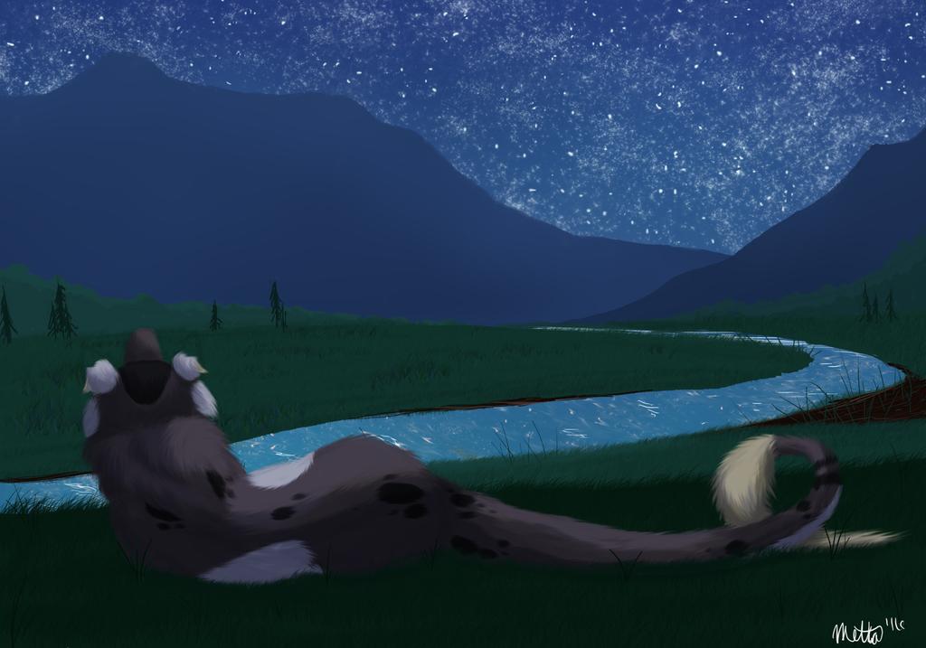 Starry Midnight by Bimisi