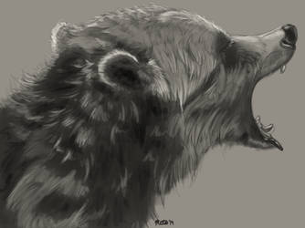 Grizzly sketch by Bimisi