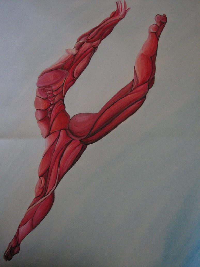 Dancer anatomy - painting 1 by al-turnertive on DeviantArt