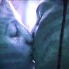 Avatar Kiss by xCookie93
