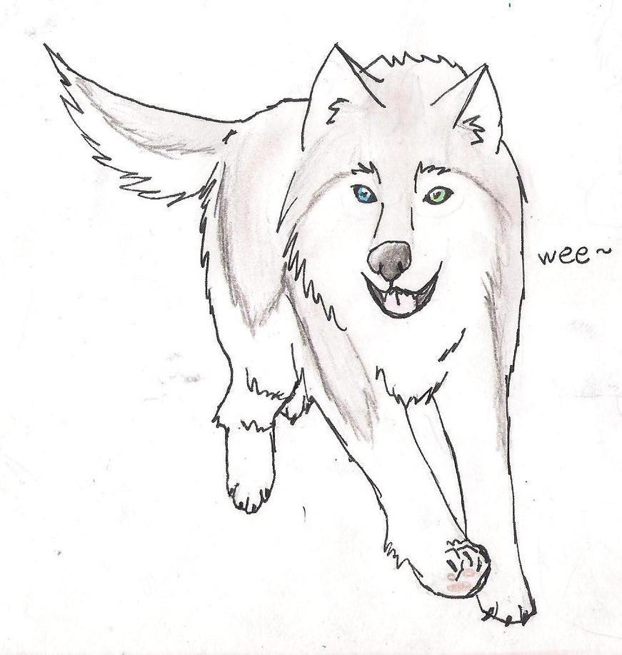 Husky Face Coloring Pages