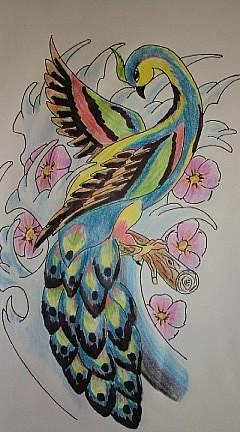 Peacock traditional tat by sugarskull tattoos on deviantart for Traditional peacock tattoo