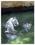 Panthera tigris bengalensis 9 by hoboinaschoolbus