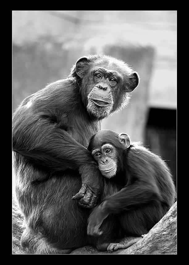 Love. by hoboinaschoolbus