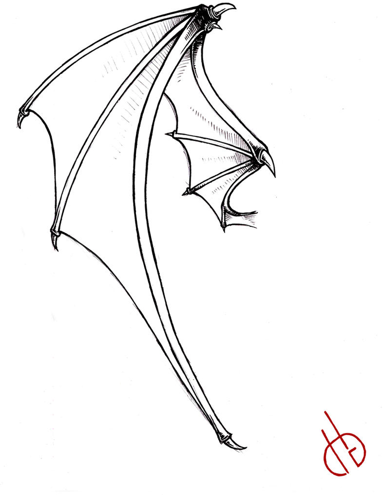 Line Drawing Wings : Bat wing by di gon on deviantart