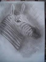zebra I by Eichenelf