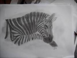 zebra II by Eichenelf