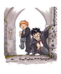 Harry and Ron and some Spiders