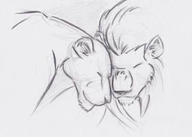 Lion Couple Sketch