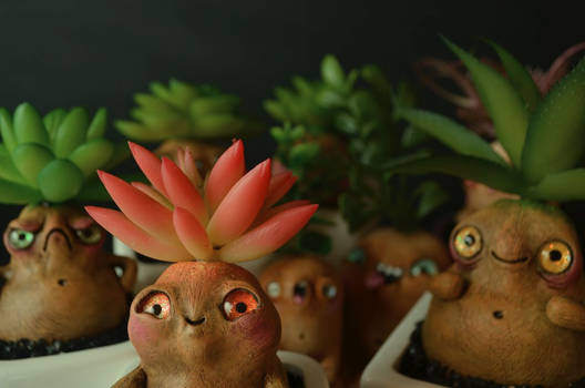 Living Succulent Root Creatures