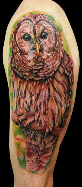 owl arm piece - dragonfly tattoo