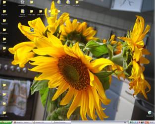 sunflowers by Erlan-Grey