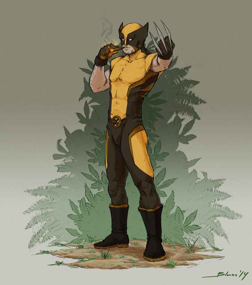 Wolverine by ChuchuaN