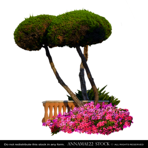 Round Trees with Flowers PNG Stock Photo cc5 FINAL