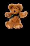 Teddy Bear 2 Stock Photo-PNG
