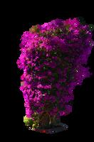 Violet Pruple Bush Stock Photo-PNG by annamae22