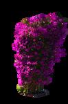 Violet Pruple Bush Stock Photo-PNG