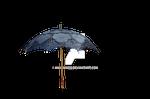 Lace Umbrella Parasol Stock Photo- PNG-  0007