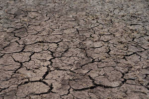 Cracked Earth Texture Stock photo- 0473 by annamae22